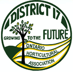 District17 logo color